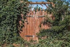 A fairy gate to the secret garden. Abandoned overgrown garden stock image