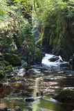 The Fairy Glen stock images