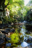 The Fairy Glen Stock Photos