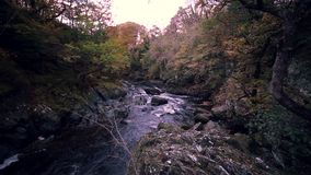 Fairy Glen Gorge Waterfall at Autumn in North Wales, UK. Looking down into rocky cascades of Fairy Glen Gorge waterfall at autumn in Snowdonia National Park in stock footage