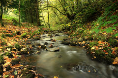 Fairy Glen, Rosemarkie, Highlands of Scotland Stock Photos