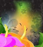 Fairy Graceful Lilys Stock Photos