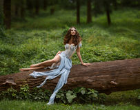 Fairy gracefully sitting on a log. Royalty Free Stock Photo