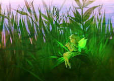 Fairy in a grass. Digital illustration of a fairy in a grass Stock Photo