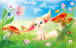 Fairy happy baby fox Royalty Free Stock Images