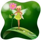 Fairy holding pink flower on the leaf Royalty Free Stock Photography