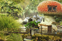 Fairy house (mushroom) Stock Images