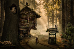 Fairy house. Fairy witch house beside the path in the dark forest Stock Photo