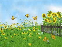 Fairy lawn with sunflowers Stock Image