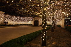Fairy Lights in courtyard Royalty Free Stock Photo