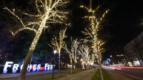 Fairy lights trees in Vienna. Vienna time-lapse with fairy lights decorated trees in Advent. Car light trails on the Ring street. People passing by at night stock footage