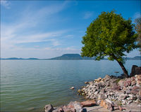 Fairy-like picture of lake Balaton Stock Image