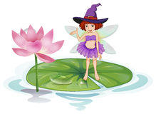 Fairy and lotus Royalty Free Stock Photos