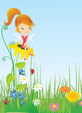 Fairy on meadow Stock Image