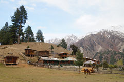 Fairy Meadows is the place to see Nanga Parbat, Pakistan. Royalty Free Stock Photo