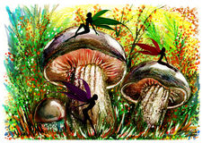 Fairy in mushroom forest. Royalty Free Stock Photography