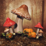 Fairy mushrooms and pumpkins Royalty Free Stock Photo