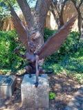 Fairy stock photos