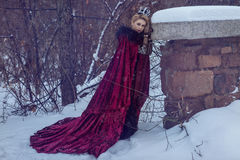 Fairy near a stone wall in winter royalty free stock images