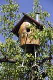 Fairy nesting box Royalty Free Stock Photos