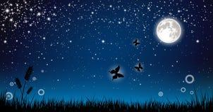 Fairy night Royalty Free Stock Photo