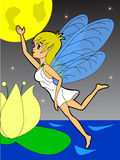 Fairy night fly Stock Photo