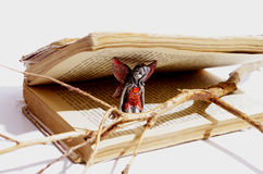 Fairy, old book and a dry branch Stock Photography