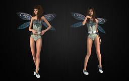 Fairy package Stock Photography