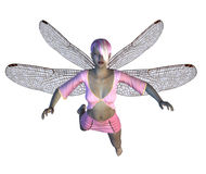 Fairy with pink dragonfly wings Royalty Free Stock Image