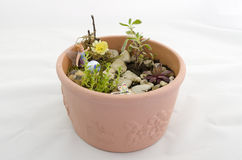 Fairy in a potted fairy garden Royalty Free Stock Image
