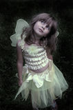 Fairy princess. A soft focus image of a young girl in the forest wearing a fairy costume, soft focus image with vignetting on the edges for more emphasis on the Stock Photos