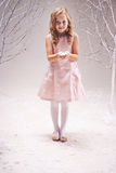 Fairy princess Stock Images