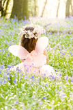 Fairy Princess in Bluebells. Fairy Princess in a sea of Bluebells deep in the woods.  Floral headdress and backlit by sunlight Royalty Free Stock Photo