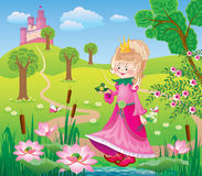 A fairy Princess with frog. Illustration for the tale of the Princess and the frog Stock Photos
