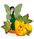 Fairy on a pumpkin Stock Photo