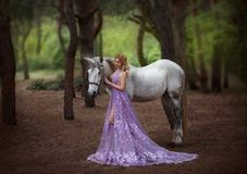 A fairy in a purple, transparent dress with a long train - caught a unicorn. Fantastic magical, radiant horse. Blonde Royalty Free Stock Photo