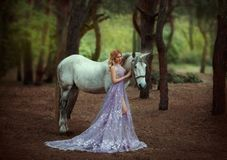 A fairy in a purple, transparent dress with a long train - caught a unicorn. Fantastic magical, radiant horse. Blonde