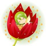 Fairy recém-nascido da flor Fotos de Stock Royalty Free