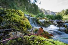 Fairy rill. With grass on the front and mountains on the background Stock Photos