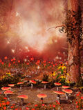 Fairy ring of mushrooms and flowers Stock Image