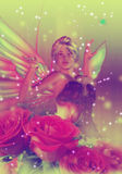 Fairy with Roses Royalty Free Stock Photography