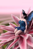 Fairy Seated on Waterlily Royalty Free Stock Image