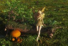Fairy sitting on a mossy log Royalty Free Stock Images