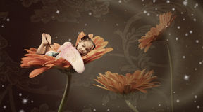 Fairy sleeping in a flower Stock Photos