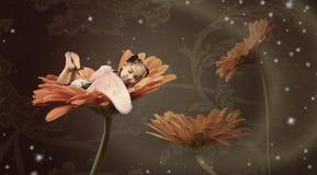 Fairy sleeping in a flower Stock Photos