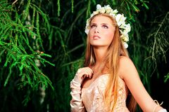 Fairy sonhador Fotografia de Stock