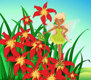 A fairy standing above a red flower Royalty Free Stock Photo