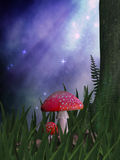 Fairy Stoop. A mushroom in a magical forest ready for a fairy to perch on it Stock Images