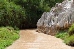 Fairy Stream Canyon. Mui Ne. Vietnam Stock Photography