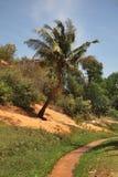 Fairy Stream - Red Canyon between Phan Thiet and Mui Ne. Vietnam Royalty Free Stock Image